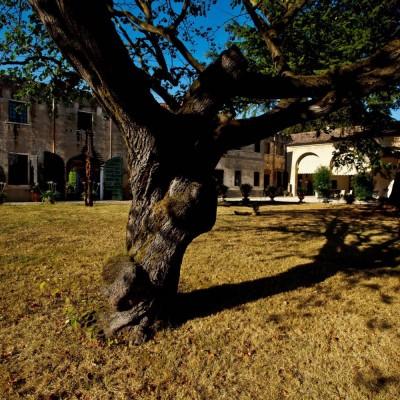 Villa-marignana-benetton-gallery-14